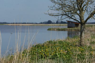 Humsterlanddijk