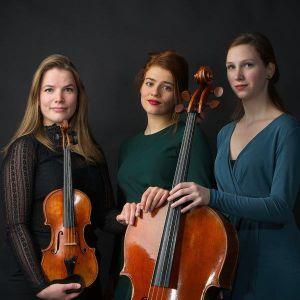 Volkman-trio-ccz