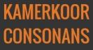 Kamerkoor consonanz
