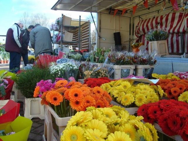 Markt-zuidhorn-koosluiken