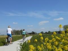 Zuidhorn mei 2014 (5)