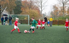 Voetbal pupillen toernooi Archief