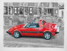 Frans-hage-autoart