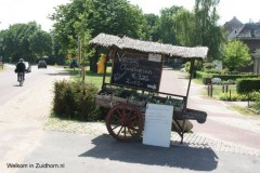 Zevenster-tuin (11)