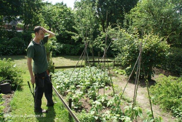 Zevenster-tuin (7)