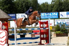 Paard ruiter klompmakerhester-