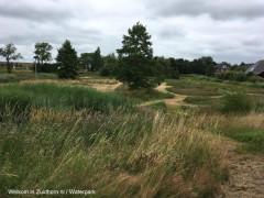 Waterpark-paden-zomer (1)