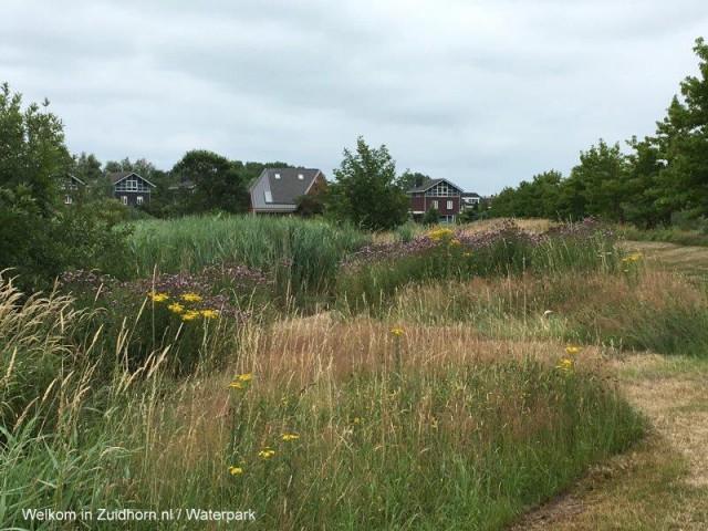 Waterpark-paden-zomer (5)