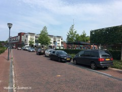 Overtuinen parkeren (2)