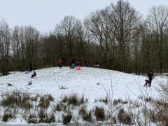 Winter-2021 (2)