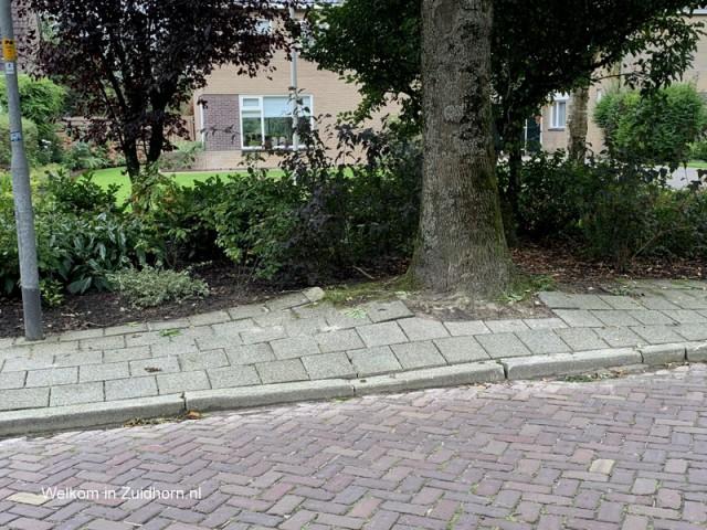 Stoep noorderweg (3)