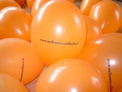 Oranjemarkt2006gino