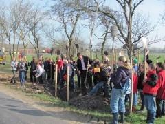 Nieuws-2012-boomplantdag1