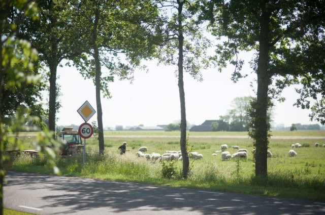 130617 fietsend naar groningen